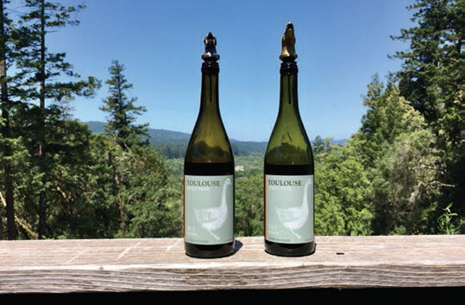Mendocino ToulouseVineyards